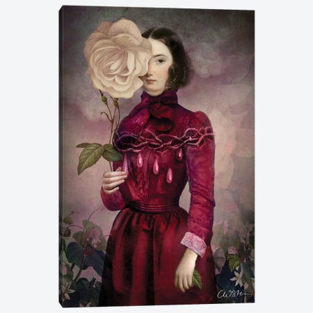 The Intriguer Canvas Print #CWS106} by Catrin Welz-Stein Canvas Art