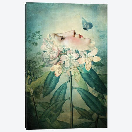 The Kiss Canvas Print #CWS107} by Catrin Welz-Stein Canvas Artwork