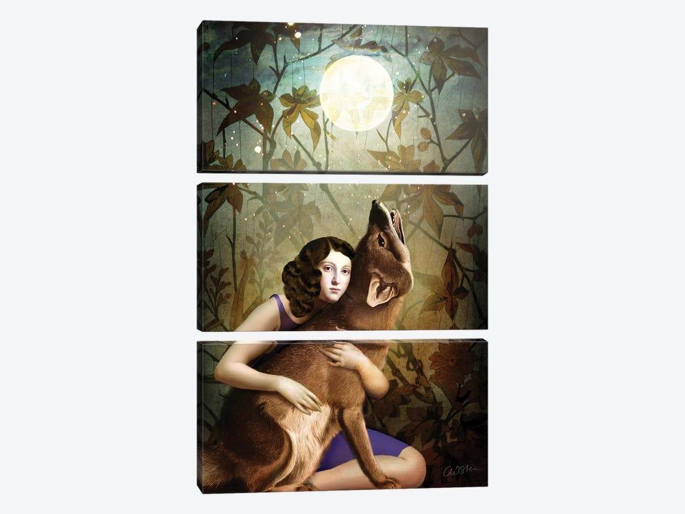 The Moon II by Catrin Welz-Stein 3-piece Canvas Artwork