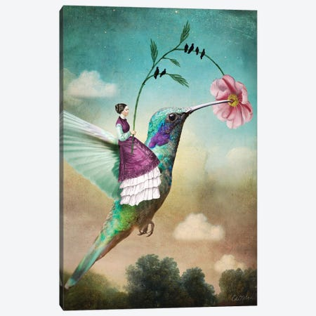 Of Wands Canvas Print #CWS116} by Catrin Welz-Stein Canvas Art Print