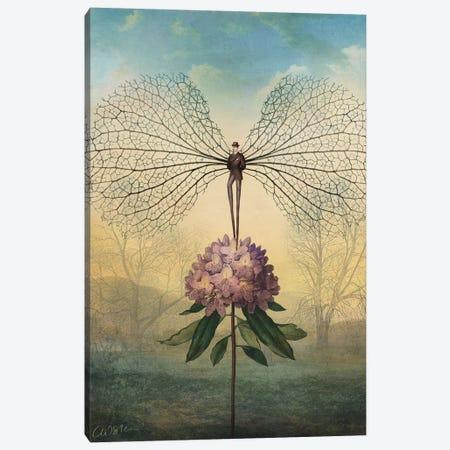 Morning Flight Canvas Print #CWS138} by Catrin Welz-Stein Canvas Artwork