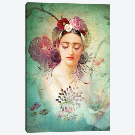 Spring Glow Canvas Print #CWS146} by Catrin Welz-Stein Canvas Art