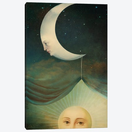 Rise And Shine Canvas Print #CWS154} by Catrin Welz-Stein Art Print