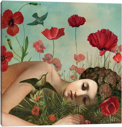 In The Poppy Field Canvas Art Print