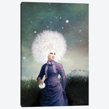 Snowball Canvas Print #CWS162} by Catrin Welz-Stein Canvas Print