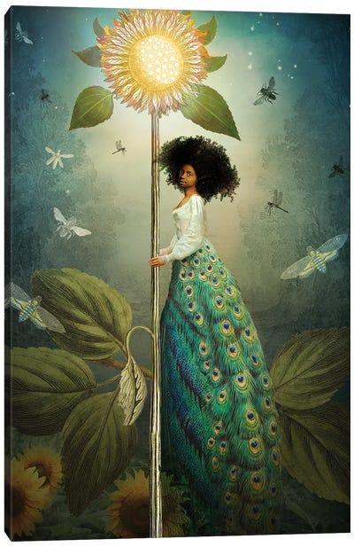 Queen Of Wands Canvas Art Print