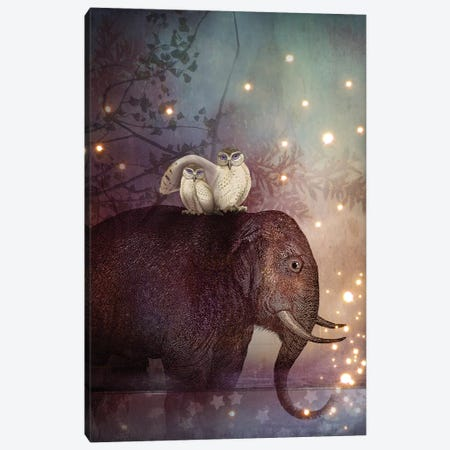 Riding Through The Night Canvas Print #CWS21} by Catrin Welz-Stein Canvas Wall Art