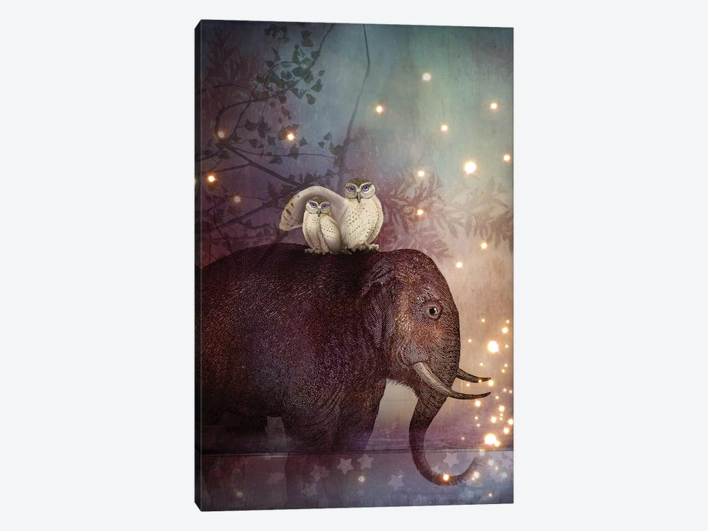 Riding Through The Night by Catrin Welz-Stein 1-piece Canvas Print