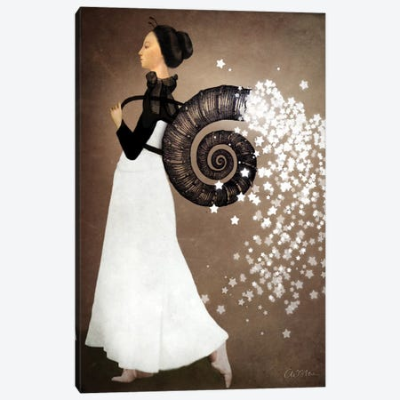 Star Fairy Canvas Print #CWS23} by Catrin Welz-Stein Canvas Artwork