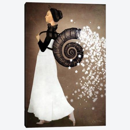 Star Fairy Canvas Print #CWS23} by Catrin Welz-Stein Canvas Artwork