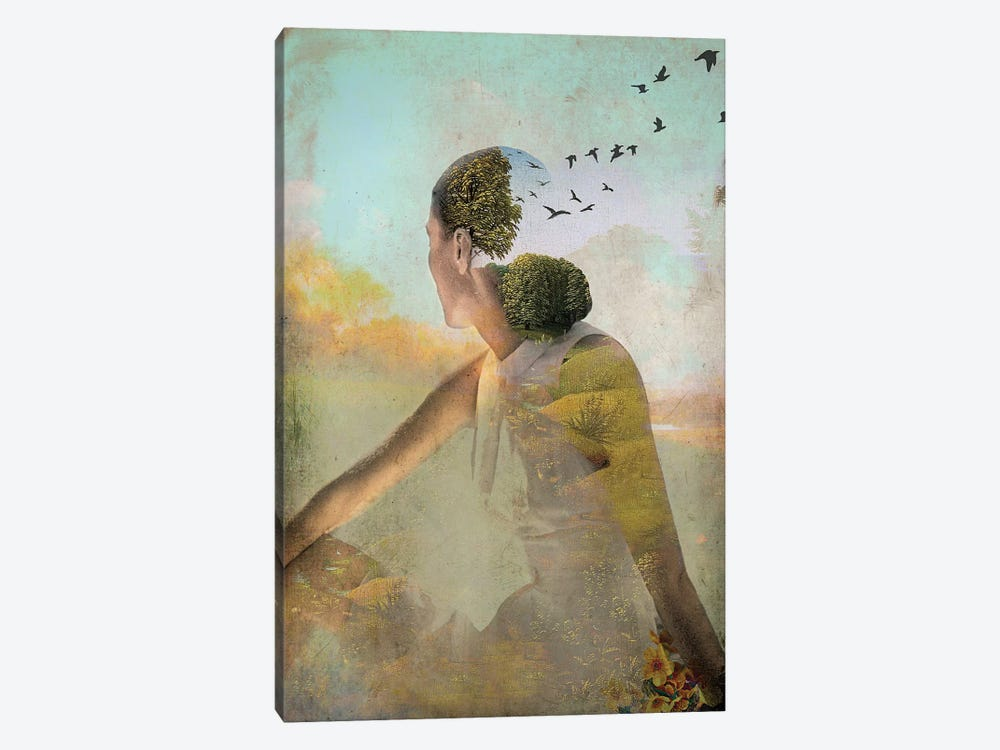 Summer Deaming by Catrin Welz-Stein 1-piece Canvas Print