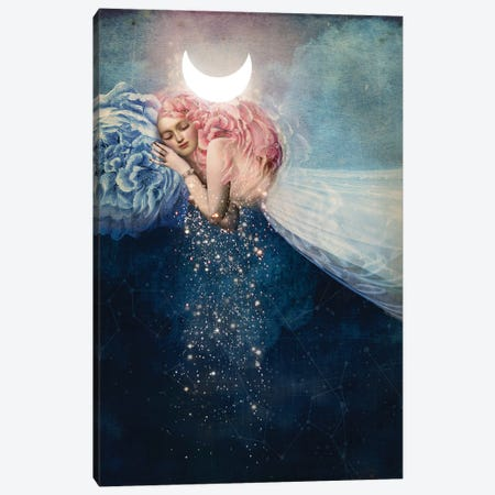 The Sleep Canvas Print #CWS26} by Catrin Welz-Stein Canvas Print