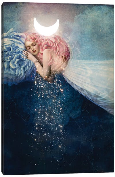 The Sleep Canvas Art Print