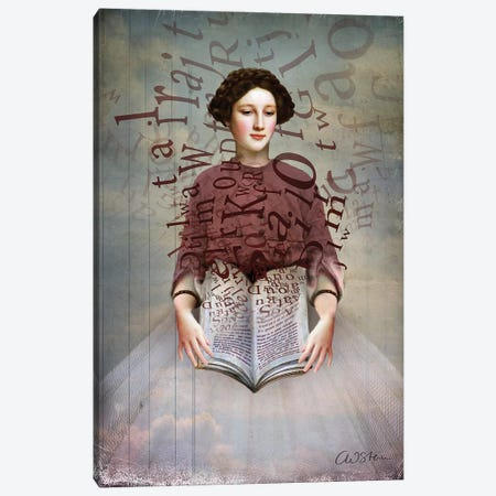 The Storybook Canvas Print #CWS27} by Catrin Welz-Stein Art Print