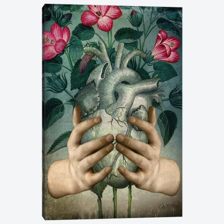 A Green Heart Canvas Print #CWS32} by Catrin Welz-Stein Canvas Print