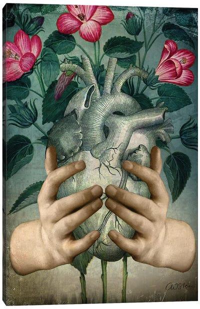 A Green Heart Canvas Art Print