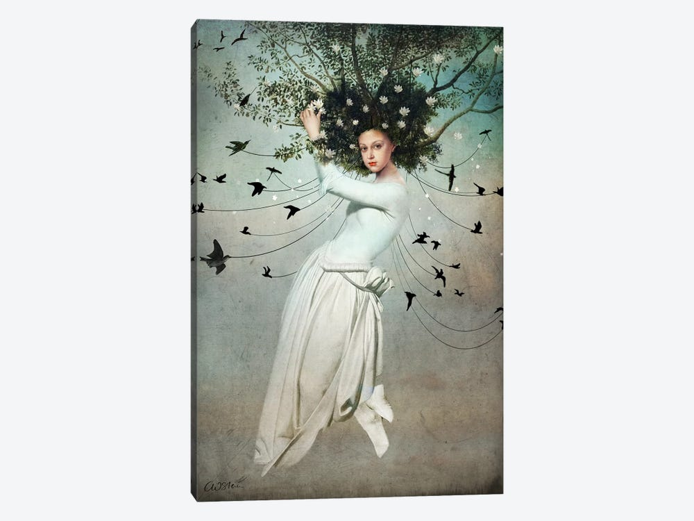 Fly With Me by Catrin Welz-Stein 1-piece Canvas Wall Art