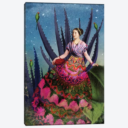 Blue Agave And Cacao Canvas Print #CWS3} by Catrin Welz-Stein Canvas Art