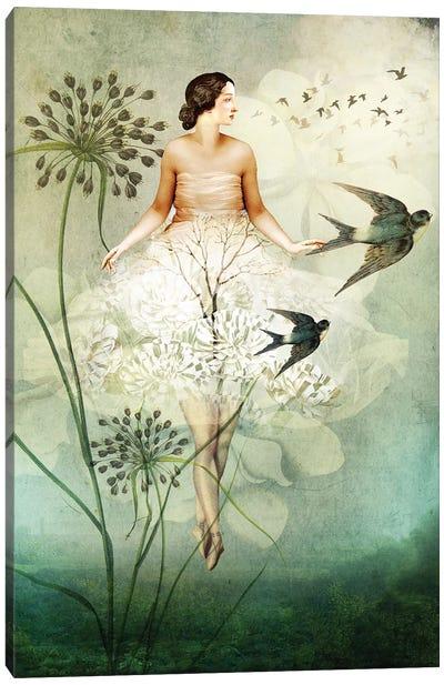 Flyby Canvas Art Print