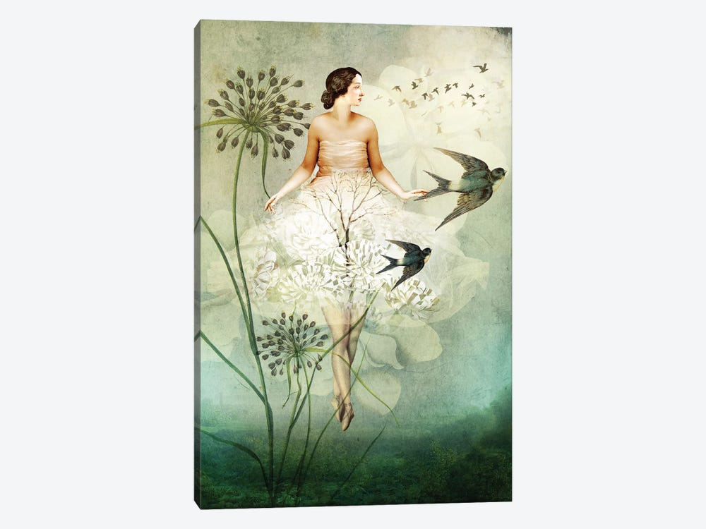Flyby by Catrin Welz-Stein 1-piece Canvas Artwork