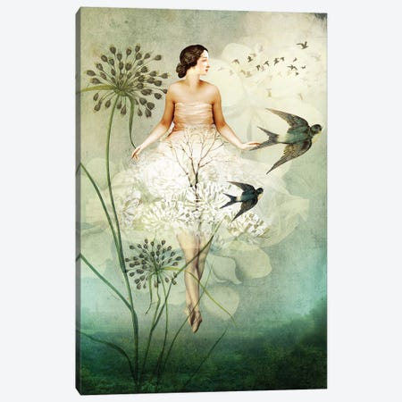 Flyby Canvas Print #CWS40} by Catrin Welz-Stein Canvas Artwork