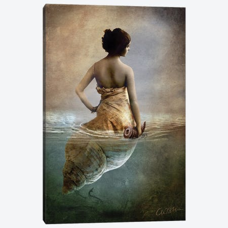 Hear Me Calling Canvas Print #CWS42} by Catrin Welz-Stein Canvas Art