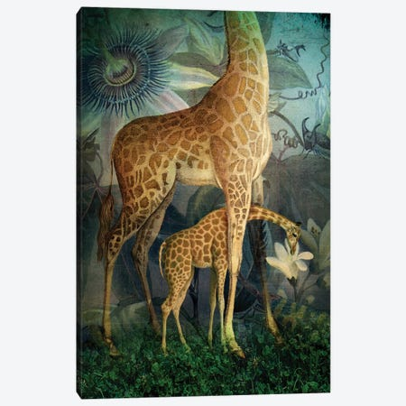 Jungle Life 3-Piece Canvas #CWS47} by Catrin Welz-Stein Canvas Art Print