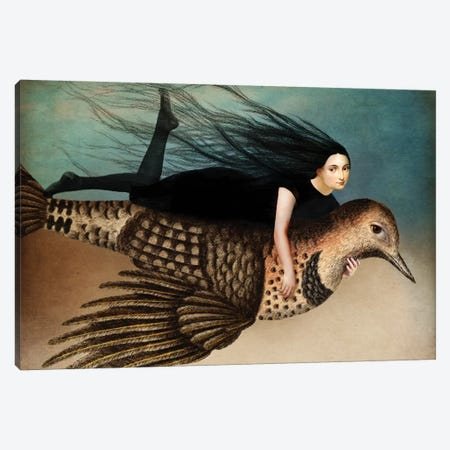 Back To Earth II Canvas Print #CWS68} by Catrin Welz-Stein Canvas Artwork