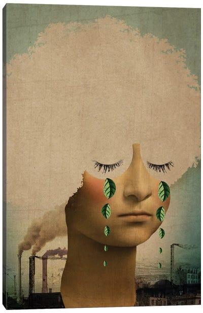 Climate Change Canvas Art Print