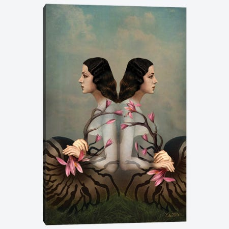 Cocoon Canvas Print #CWS72} by Catrin Welz-Stein Canvas Print
