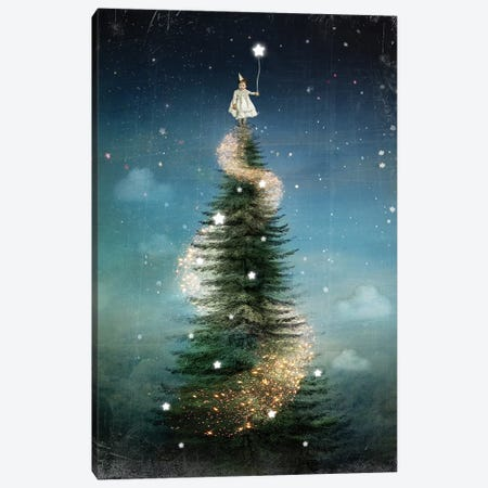 Royal Sapin Canvas Print #CWS84} by Catrin Welz-Stein Art Print
