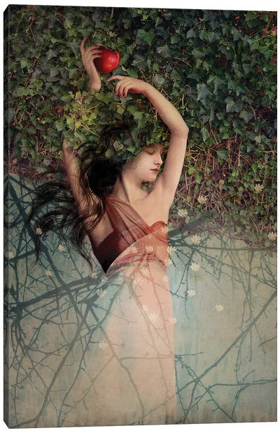 Snow White Canvas Art Print