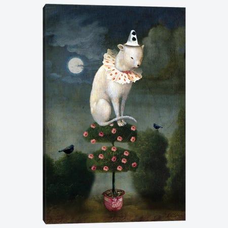 Harlekin Cat Canvas Print #CWS96} by Catrin Welz-Stein Canvas Artwork