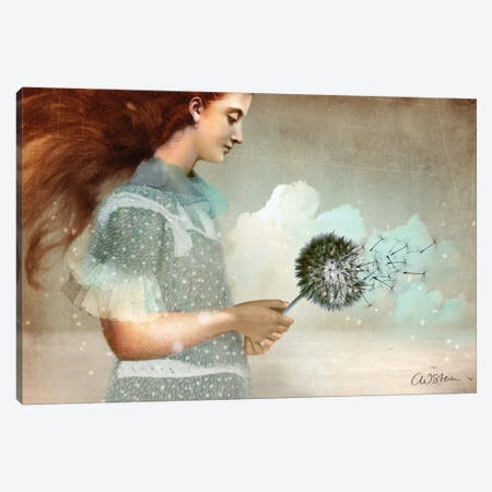 Make A Wish Canvas Print #CWS97} by Catrin Welz-Stein Canvas Art