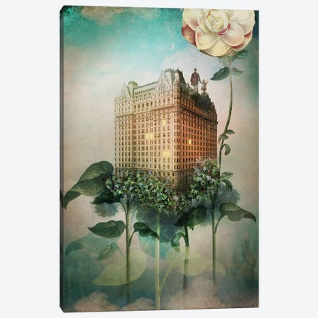 Reach Out Canvas Print #CWS99} by Catrin Welz-Stein Canvas Print