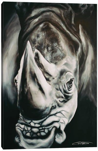 Rhino II Canvas Art Print