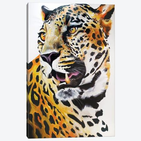 Cheetah Canvas Print #CWT1} by Chance Watt Canvas Art Print