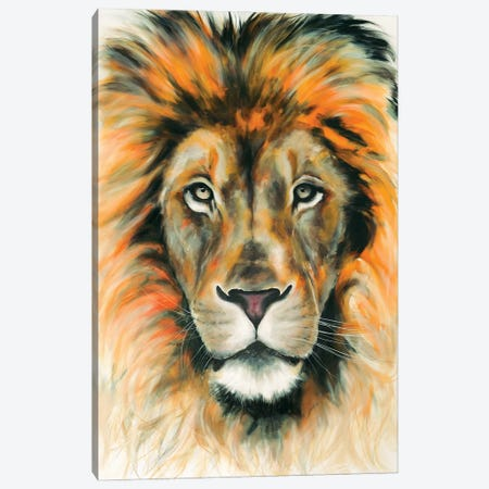 Lion II Canvas Print #CWT6} by Chance Watt Canvas Wall Art