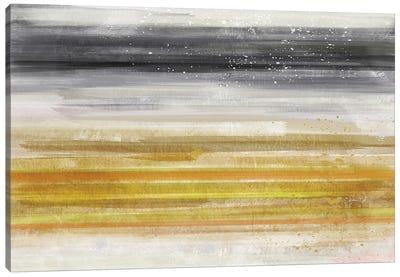 Linear Illusion I Canvas Art Print