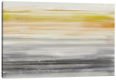 Linear Illusion II Canvas Art Print
