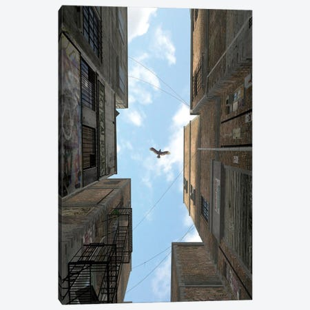 Afternoon Alley Canvas Print #CYD3} by Cynthia Decker Canvas Art