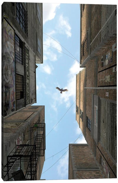 Afternoon Alley Canvas Art Print