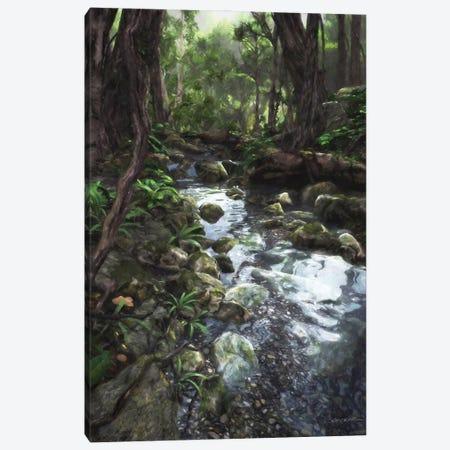Woodland Stream Canvas Print #CYD88} by Cynthia Decker Canvas Art
