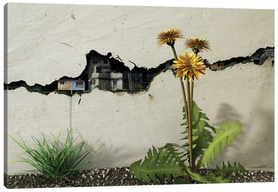 Between The Cracks Canvas Art Print