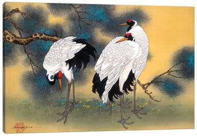 Morning Cranes Canvas Art Print