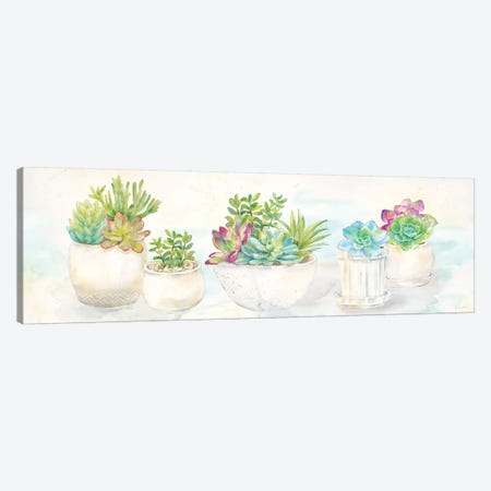 Sweet Succulents Panel Canvas Print #CYN104} by Cynthia Coulter Canvas Art Print