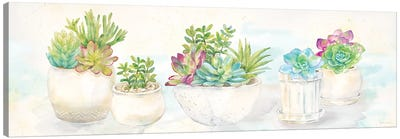 Sweet Succulents Panel Canvas Art Print