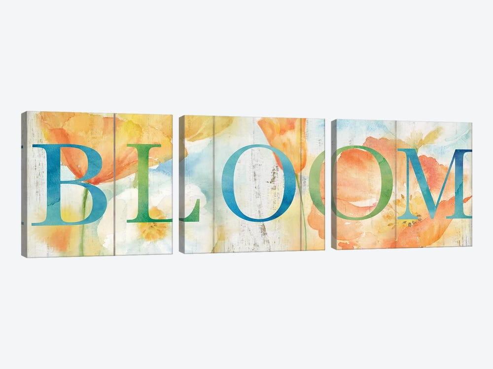 Watercolor Poppy Meadow Grow Sign by Cynthia Coulter 3-piece Canvas Wall Art