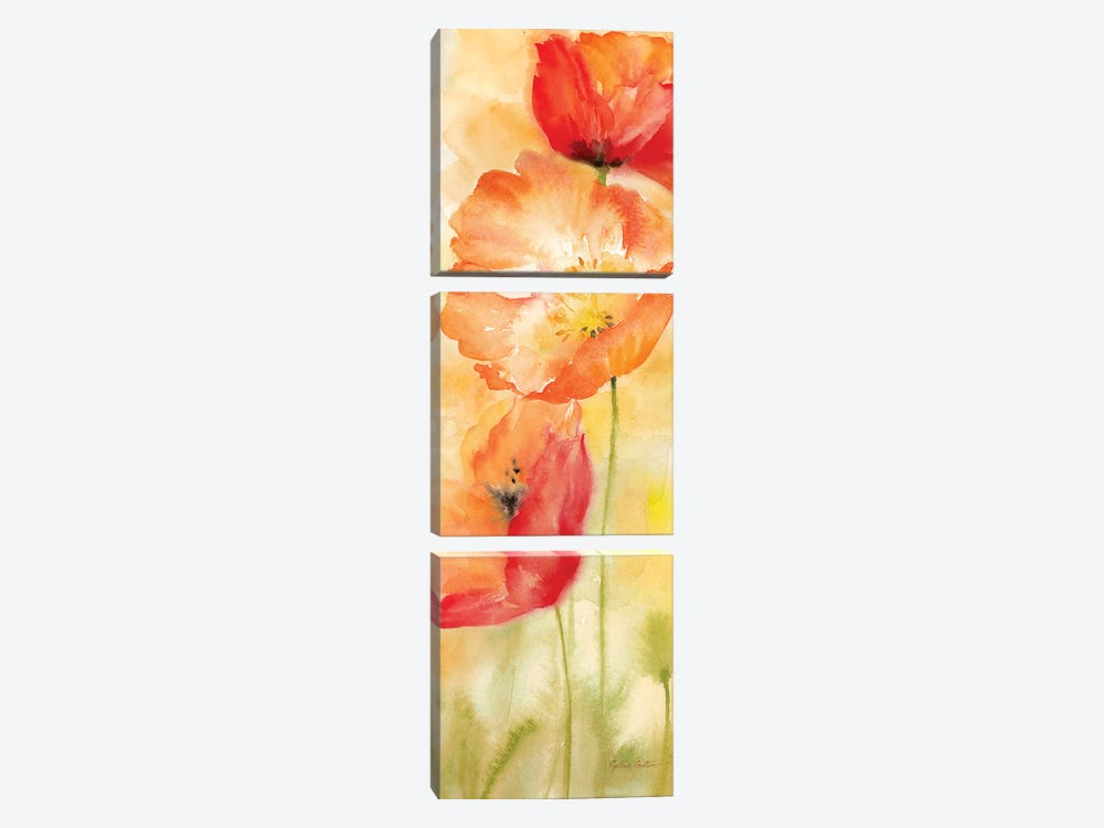 Watercolor Poppy Meadow Spice Panel II by Cynthia Coulter 3-piece Canvas Wall Art
