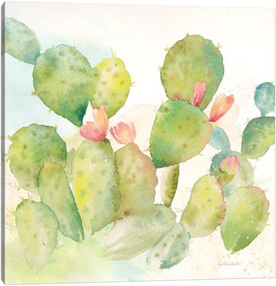 Cactus Garden I Canvas Art Print